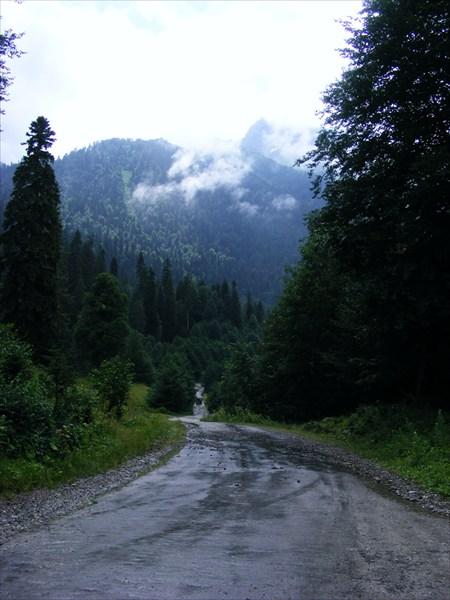 Дорога в обратный путь