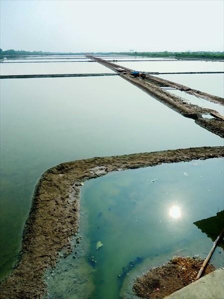 Бесконечные рисовые поля